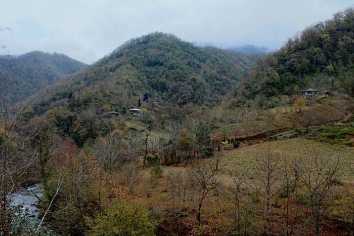მომაკვდავი სოფელი - კობალაური. კინტრიშის ხეობა. დარჩენილია ოთხი მცხოვრები.