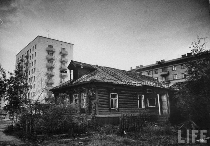 hruwevki-life-21