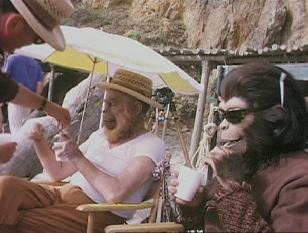 """მაიმუნების პლანეტა"""" 2001 წელი"""